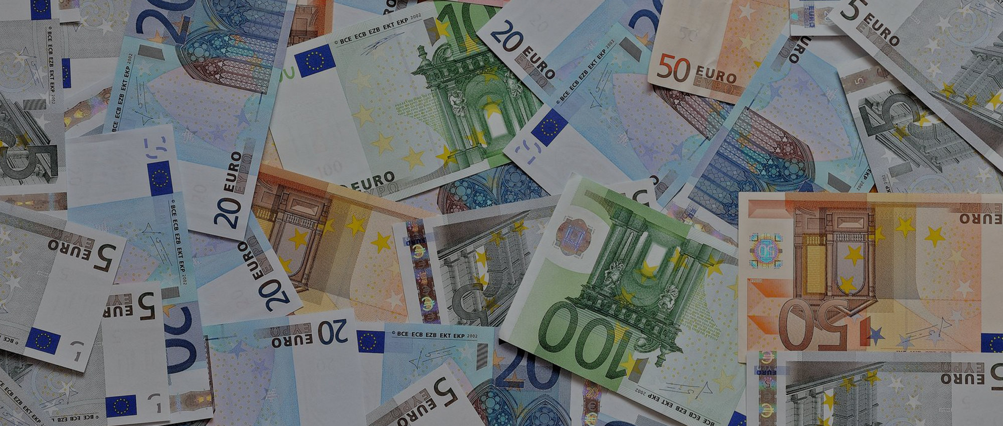 Currency Guide Euro