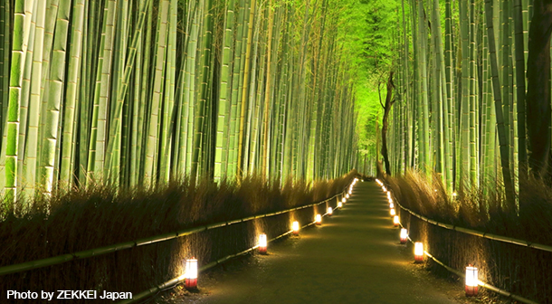 Arashiyama_Bamboo_Forest_Japan_Photo_By_ZEKKEI_Japan