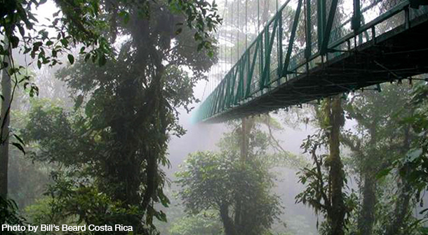 Monteverde_Cloud_Forest_Reserve_Costa_Rica_Photo_By_Bills_Beard_Costa_Rica